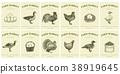 农场 鸟儿 鸟 38919645