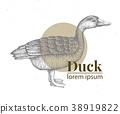 Vector hand drawn duck illustration. Retro 38919822