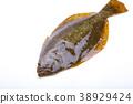 掙扎 魚 生魚片 38929424