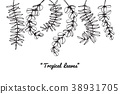 樹葉 黑白 單色 38931705