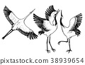 Wild birds in flight. Animals in nature or in the 38939654