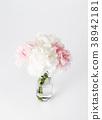 카네이션, 꽃병, 흰배경 38942181