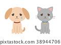 울고있는 개와 고양이 38944706