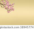금 병풍 벚꽃 38945774