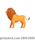 lion, animal, vector 38953606
