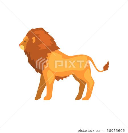 Powerful lion standing, wild predatory animal side 38953606