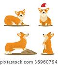 Corgi Dog Set of Four Pictures Vector Illustration 38960794