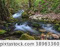Bigar river, Romania 38963360