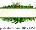 Tropical leaves background. Rectangle plant bamboo 38971856
