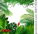 Tropical jungle background 38971858