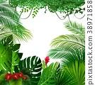 Tropical jungle background 38971858