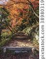 maple leaves in Dazaifu Tenmangu Shrine of fukuoka 38980319