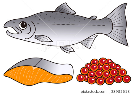 Salmon fillet how much illustration clip art 38983618