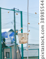 운동회의 이미지 38985544