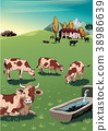 cowsGrazing-Col5.eps 38986639