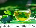 Glass of Herbaceous Tea with Ginkgo Leaves 38987152