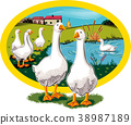 oval frame with rural landscape and geese. 38987189