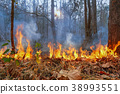 wildfire on mountain in thailand 38993551