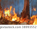 wildfire on mountain in thailand 38993552