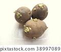 spring, potatoes, potato 38997089