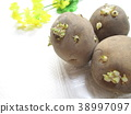 spring, potatoes, potato 38997097