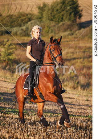Young woman riding brown horse 39004592