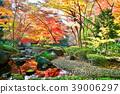가을, 단풍, 도쿄 39006297