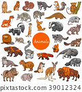 wild mammals animal characters big set 39012324