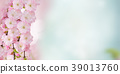 Blossoming pink tree Flowers 39013760