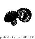 vector, vectors, shiitake mushroom 39015331