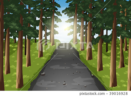 Background scene of road in the forest 39016928