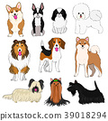 矢量 插图 动物 39018294