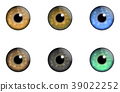 Collections eyes 39022252