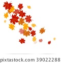 Autumn leaves on white background 39022288