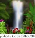 Beautiful on the waterfall background 39022298