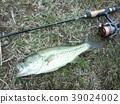 ตกปลาเบส 39024002