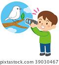 觀察鳥類 野生鳥類 野鳥 39030467
