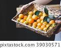 Marian plum fruits 39030571