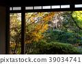 간사이, 교토시, 킨키 39034741