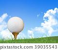 高爾夫 高爾夫球 曲棍球 39035543