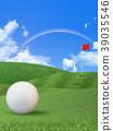 高爾夫 高爾夫球 曲棍球 39035546