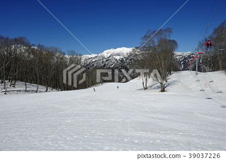 Oku Tone雪園的山毛櫸樹課程(1) 39037226