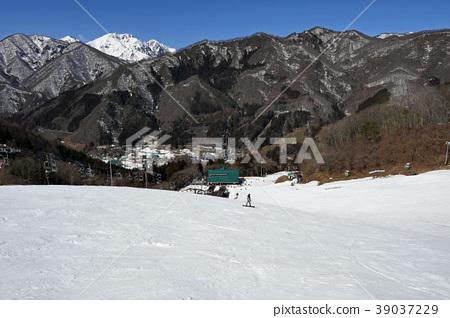 Oku Tone Snow Park的生活斜坡 39037229