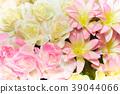 背景 花朵 花卉 39044066
