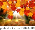 Autumn leaves background. Vector 39044689
