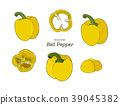Pepper hand drawn vector set. 39045382