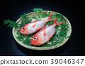 红金眼鲷 红鲷鱼 鱼 39046347