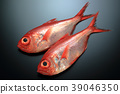 ปลา,ปลาน้ำเค็ม,ปลาทะเลลึก 39046350