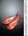 ปลา,ปลาน้ำเค็ม,ปลาทะเลลึก 39046351