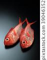 ปลา,ปลาน้ำเค็ม,ปลาทะเลลึก 39046352